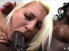 chocolate-tranny-bombshell-chanel-couture-drills-pussy