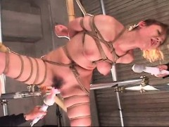 tied-up-asian-gets-holes-dildoed-untils-cums