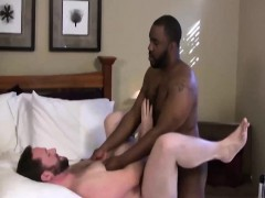 Sexy White Bear Blowing Black Daddy Bear At Home For Real