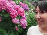 00474_w_h_sayuri