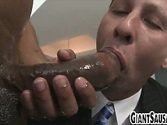 Big Black Cock Sucked By Stud In A Suit