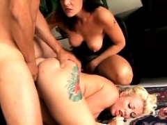 kinky sluts passion to get their tight assholes fucked hard anjinha.com.br –