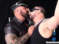 dominant-bear-barebacking-blindfolded-wolf